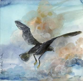 mghl_robert andrew parker_bird