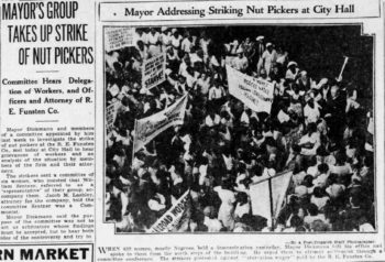 """Clipping of an article on the Nut Picker Strike (1933). The article headline reads """"Mayor's Group Takes Up Strike of Nut Pickers: Committee Hears Delegation of Workers and Officers and Attorney of R.E. Funsten Co."""""""