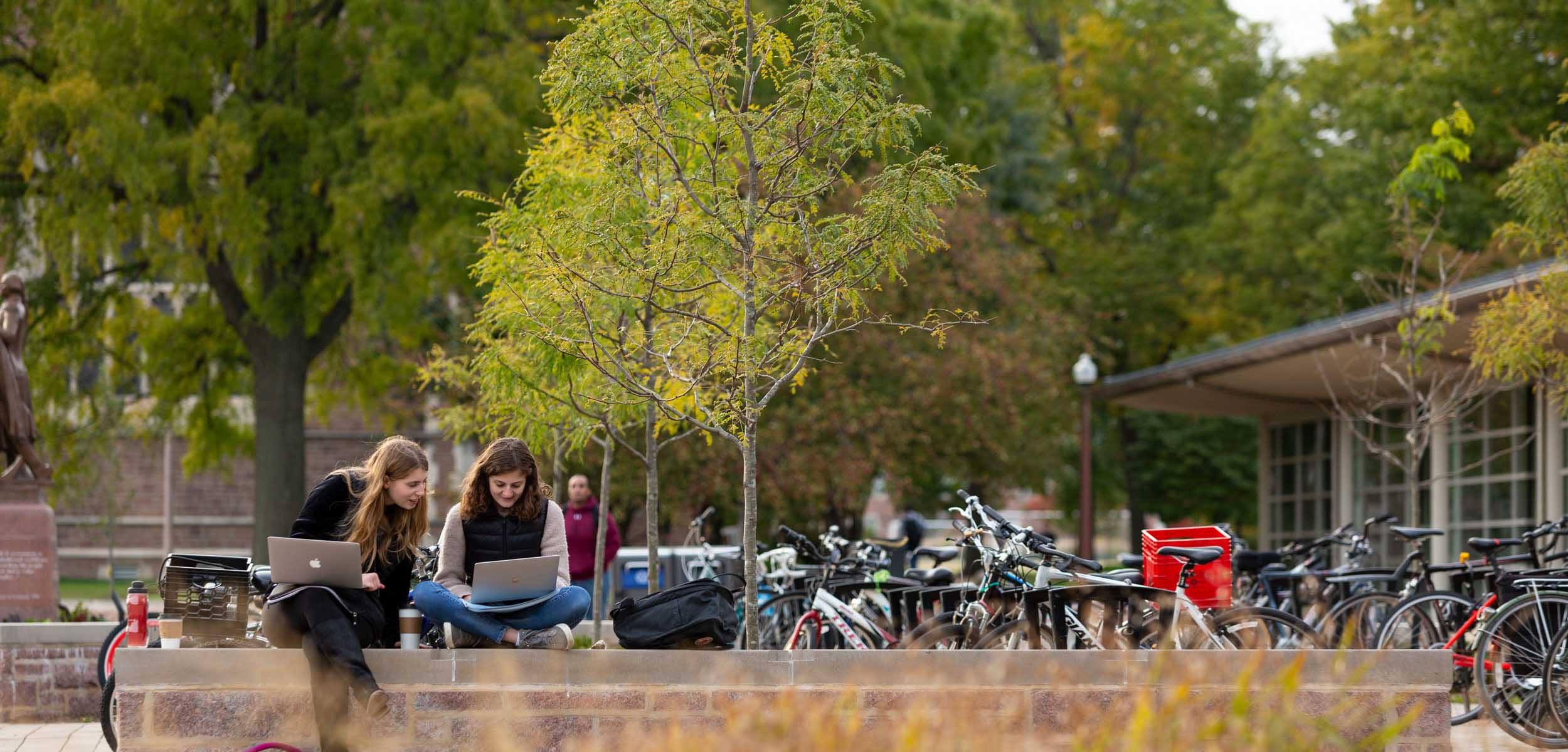 Students sitting outside on a stone retaining wall near the bike racks, each studying on their respective laptops.