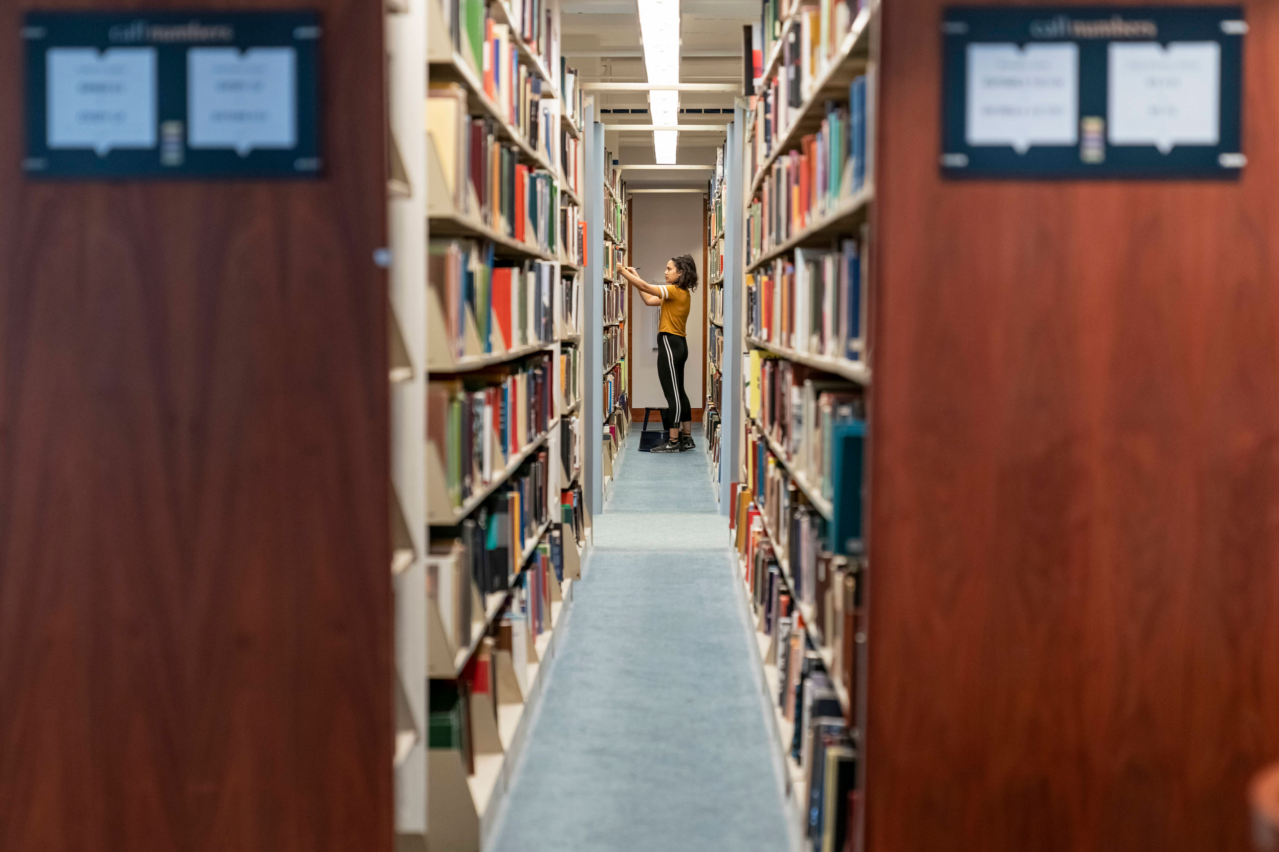 A student shelving books in the stacks.