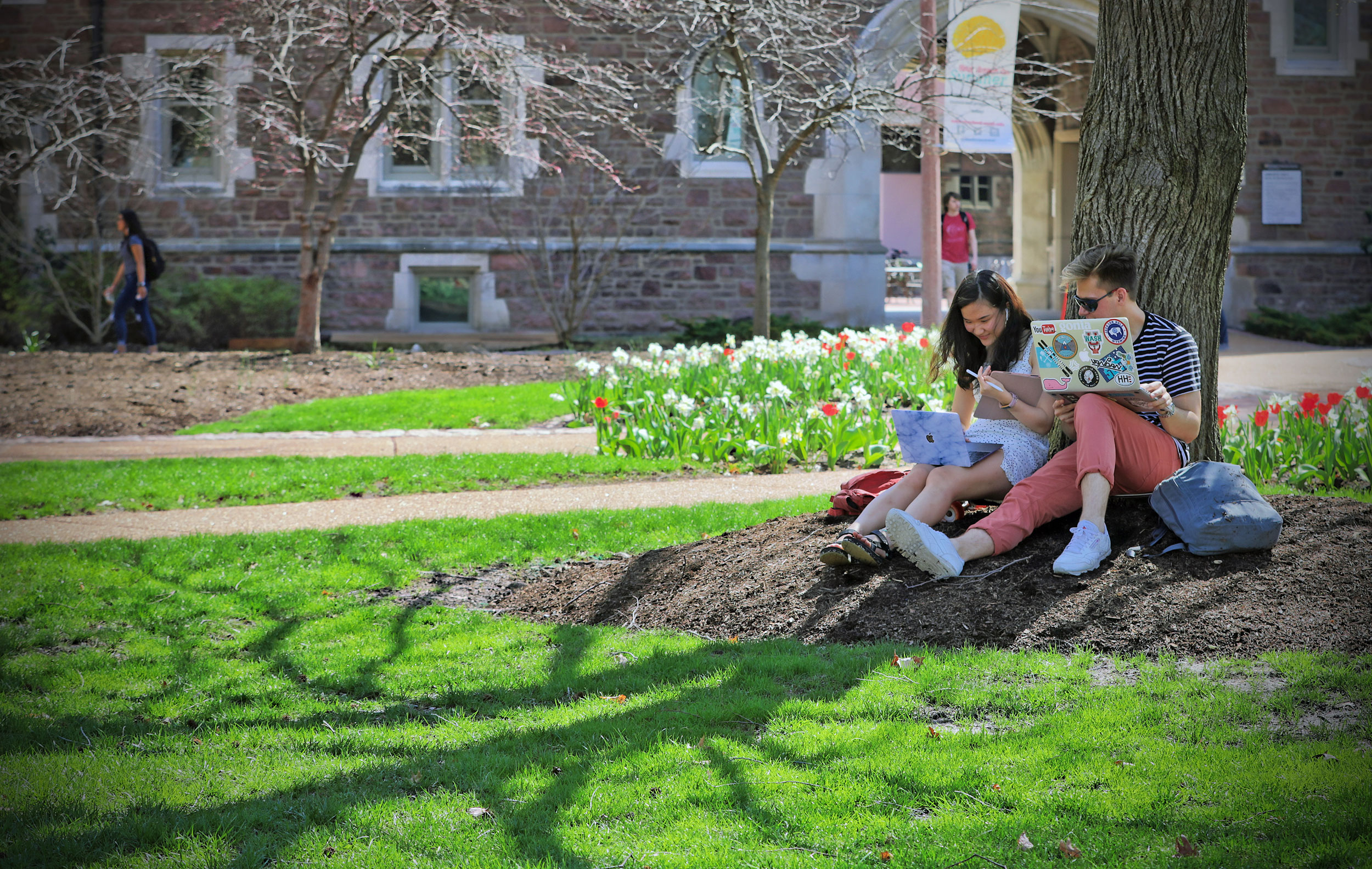 Two students studying with laptops beneath a tree on campus.