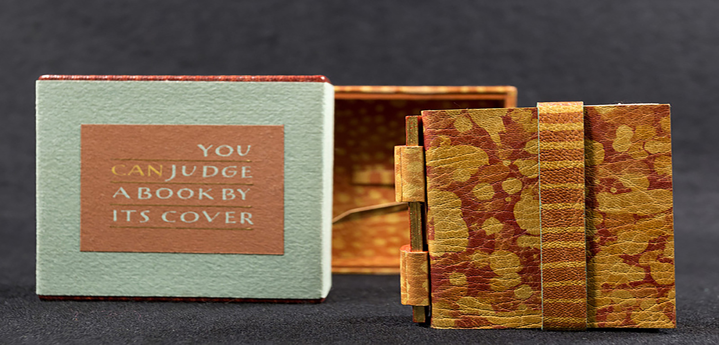 """A close up image of the miniature book """"You CAN Judge a Book by Its Cover."""" The book comes in a little case with a little box."""