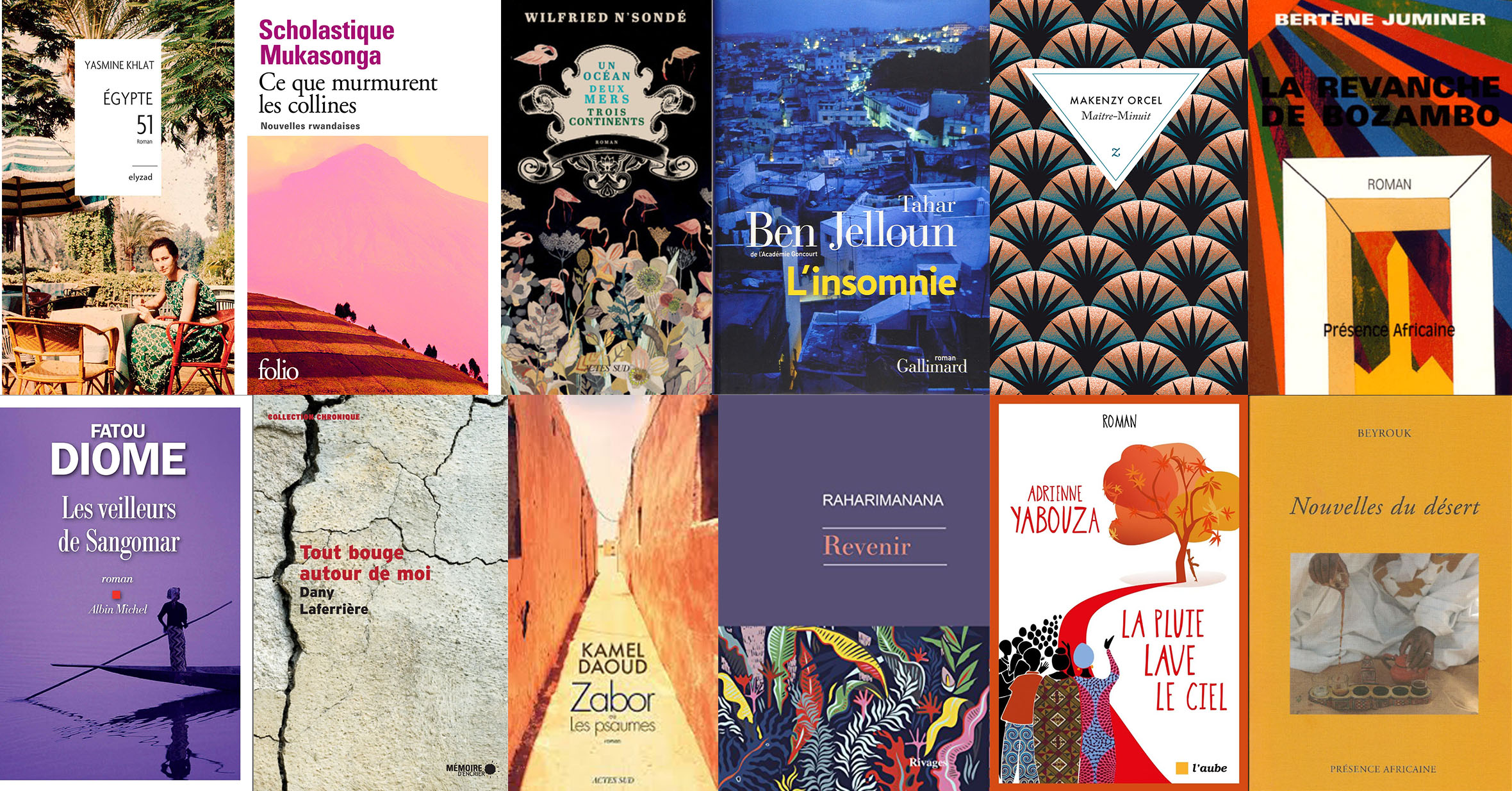 A collage of the various French language novels and short stories found within Francophone Voices.