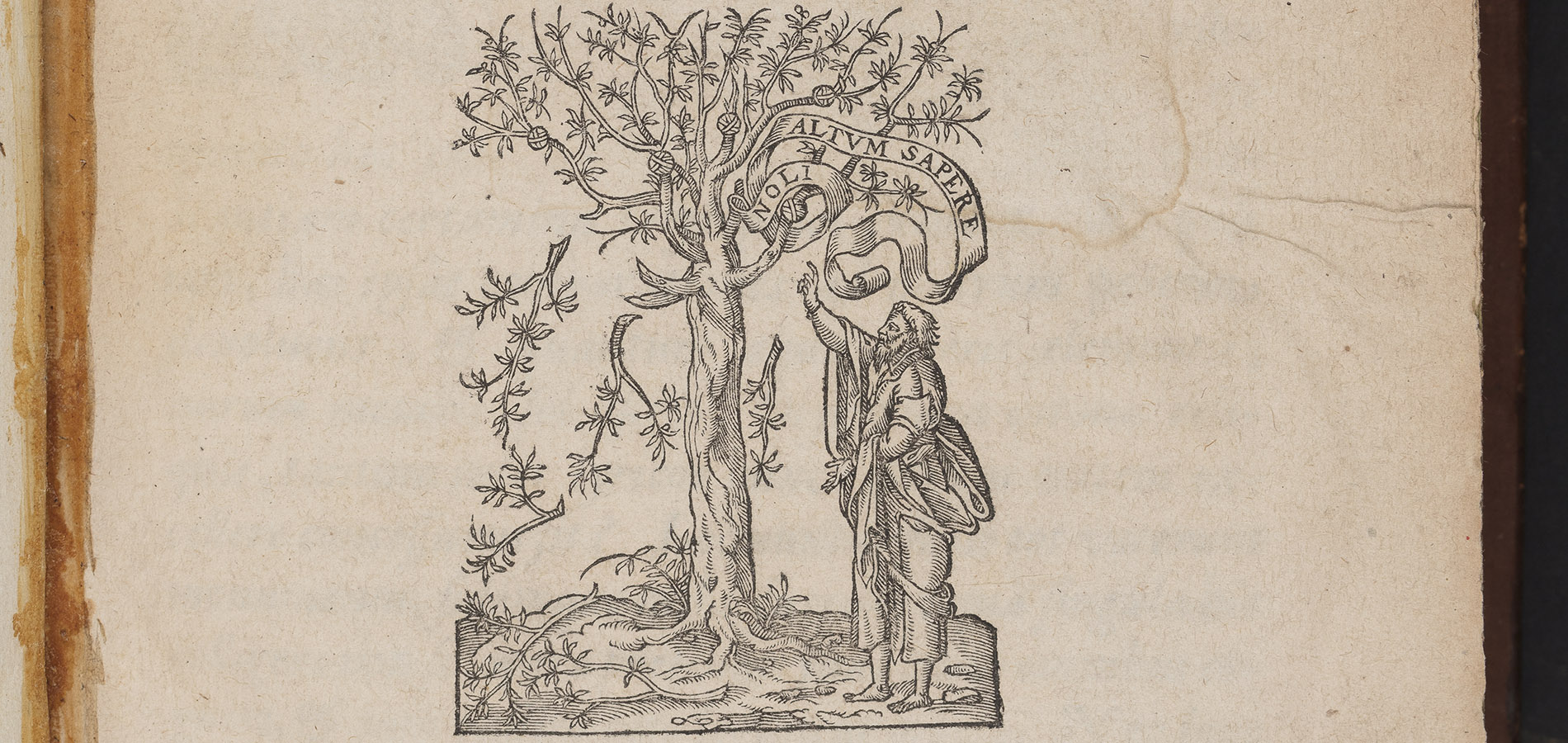 Image displays the yellowing title page of Pindar (1599). Text is written in Greek with an image of Pindar (Pindar was from Thebes and was one of the nine canonical lyric poets of ancient Greece) beneath an olive tree.