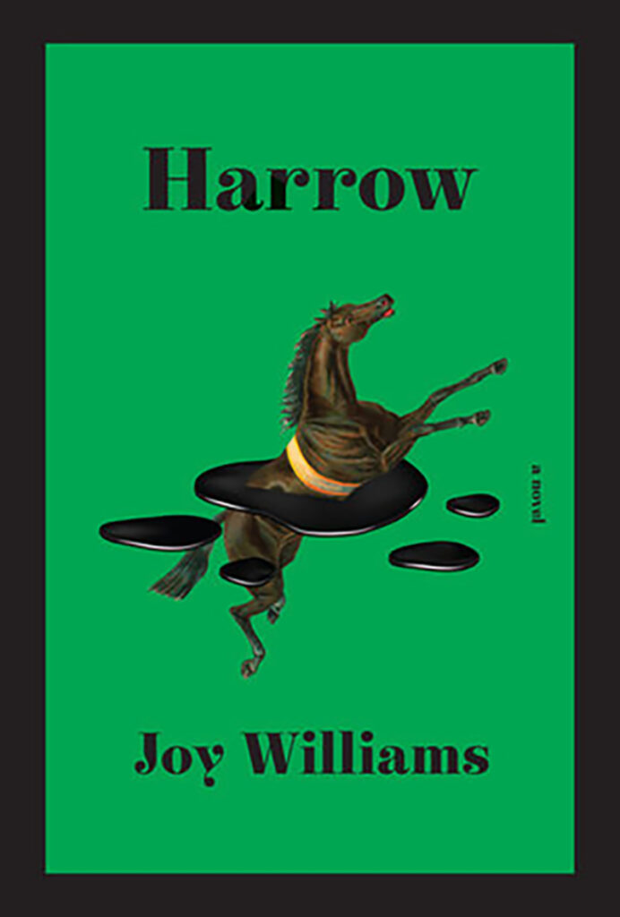 The cover art has a horse leaping through - up and out - a splash of ink.