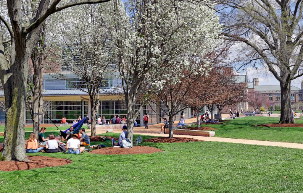 Students gathered in groups on the lawn around Olin Library.